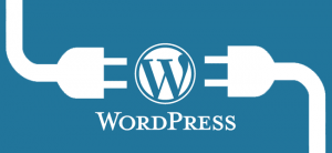 wordpress webdesigner