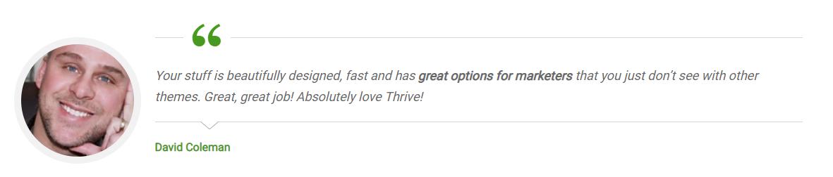 thrive themes ervaringen
