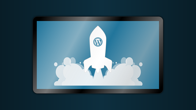 wordpress hosting versio